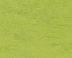 Piso en vinilo rollo homogéneo Classic 0121 Image