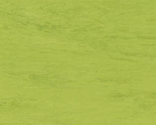 Piso en vinilo rollo homogeneo classic 0121 Image